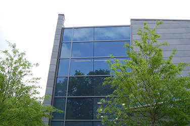 Curtain Wall or Window Wall: Depends on project goals and design aesthetics
