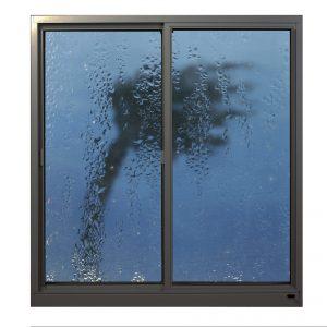 Hurricane Windows