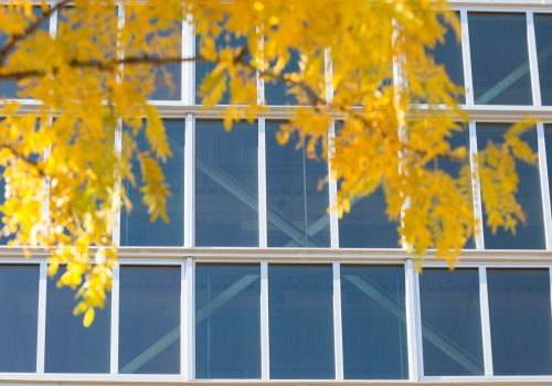 Glass and Glazing Efficiency: What You Need to Know